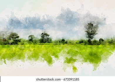 Green rice field and forest with aquarelle water paint effect
