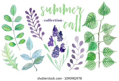 Green set. Summer call collection.  Watercolor elements in white background. Botanical illustrations. isolated elements.  floral elemnts for your design.