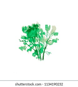 Green stylized watercolor painted tree isolated on white background