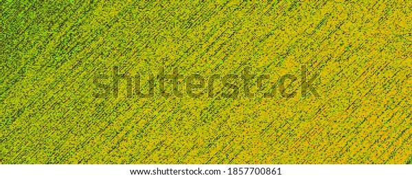 Green texture dust art abstract illustration background