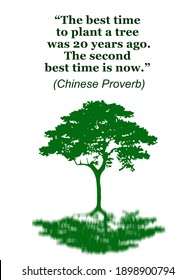 green tree illustration with wise words about the importance of planting trees, on white background