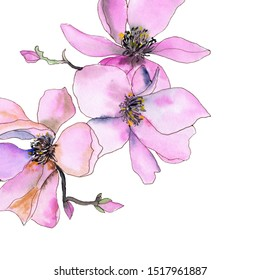 Greeting card with drawing pink magnolias. Wedding invitation floral design.