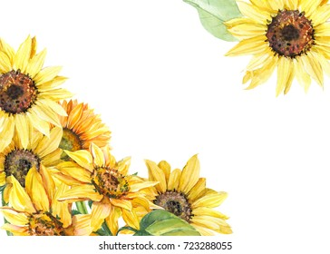Greeting card with space for text, autumn composition of sunflowers, watercolor botanical illustration, hand drawing