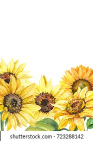 Greeting card with space for text, autumn composition of sunflowers, watercolor botanical illustration