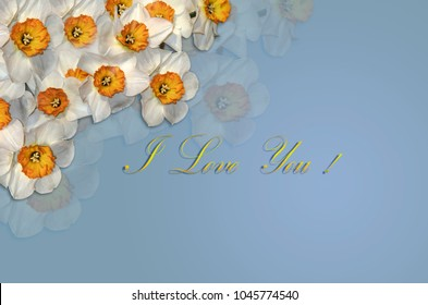 Greeting card with white daffodils in the corners and a gold greeting I Love You on a bluish background
