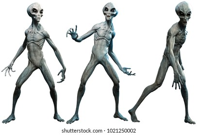 Grey aliens 3D illustration