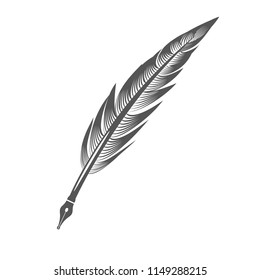 Grey Feather Pen Isolated on White Background