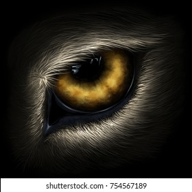 Grey wolf eye digital realistic painting.
