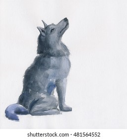 Grey Wolf isolated on white original watercolor painting