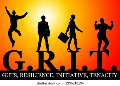 grit defined as guts, resilience, initiative and tenacity