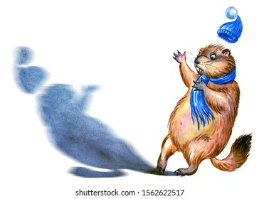 Groundhog and shadow, watercolor illustration on a white background, isolated. Postcard with Marmot Phil Punxsutawney to the Groundhog Day.