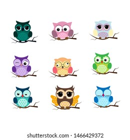 Group of birds. Owls night birds with big eyes. Colorful picture. Illustration