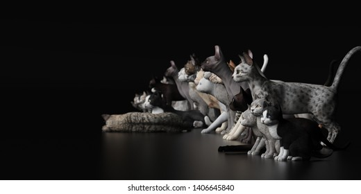 Group of cats  side view with depth of field black floor 3d rendering