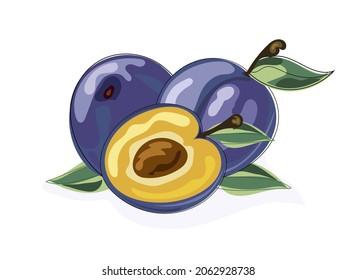プラムの一群、葉のある紫の果実、石で半分に切った梅、おいしい熟したプラム