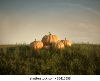 group of pumpkins on lawn