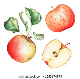 Group of ripe red apples with green leaves on white background