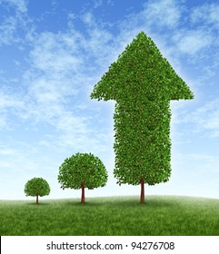 Growing Investment and financial success with long term conservative money planning and wealth management with an investing strategy as a young tree growing to a huge plant with an arrow pointing up.