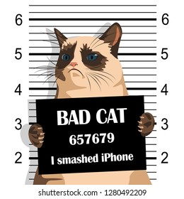Grumpy cat holds in his paws a sign with the inscription. Grumpy Cat on Police Lineup Background. Naughty evil cat.