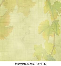 grunge vine leaves background