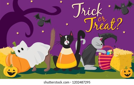 Halloween Cats Trick or Treating Illustration