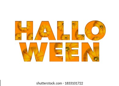 Halloween lettering in orange color with pumpkins inside isolated on white color backdrop. Halloween holiday.