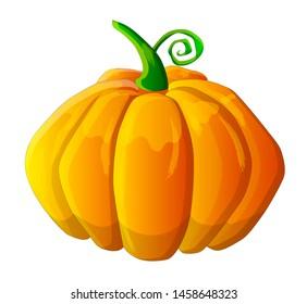 Halloween pumpkin illustration, holiday, orange pumpkin