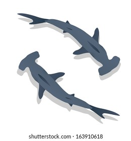 Hammer sharks, isolated objects on white background