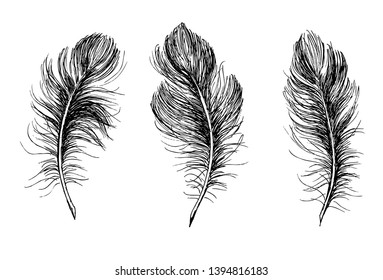 Hand draw set of feathers