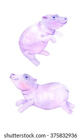 Hand draw watercolor hippo. Art for kids.