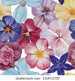 Hand draw watercolor illustration. Watercolor painting set of five flowers isolated on white. Design element.