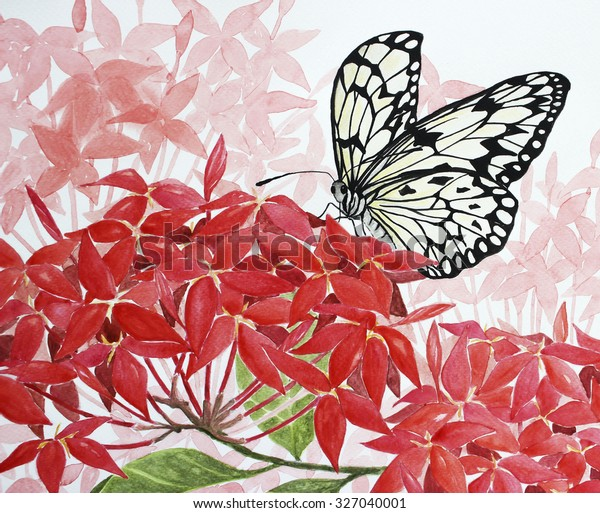 Hand Drawing Red Flowers Butterfly Backgrounds Stock