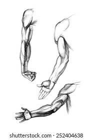 hand drawing in turns