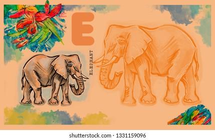 hand drawn animal for English alphabet , Elephant