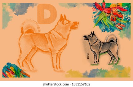 hand drawn animal for English alphabet , Dog