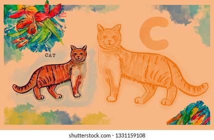hand drawn animal for English alphabet , Cat