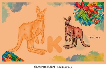 hand drawn animal for English alphabet , Kangaroo