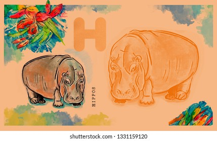 hand drawn animal for English alphabet , Hippos