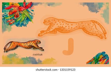 hand drawn animal for English alphabet , Jaguar