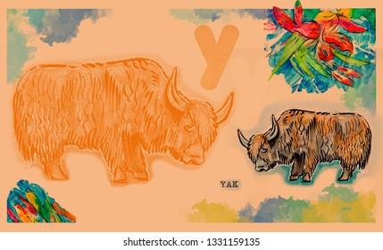 hand drawn animal for English alphabet , Yakr
