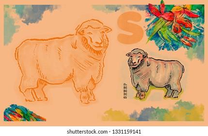 hand drawn animal for English alphabet ,Sheep