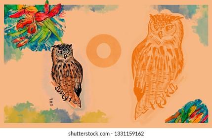 hand drawn animal for English alphabet , Owl