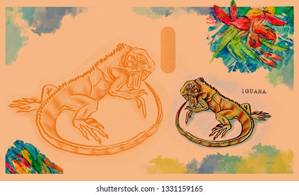 hand drawn animal for English alphabet , Iguana