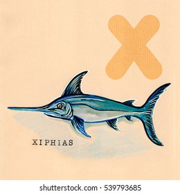 hand drawn animal for English alphabet , Xiphias (swordfish)