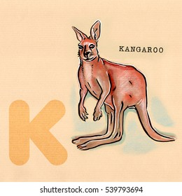 hand drawn animal for English alphabet , Kangaroo