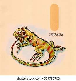 hand drawn animal for English alphabet , Iguana