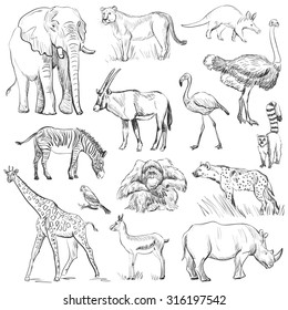Hand drawn animal planet set,