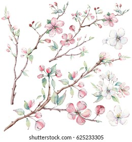 hand drawn apple tree branches and flowers, blooming tree. It's perfect for wedding cards and invitations, mothers day and birthday card, valentines card.
