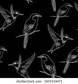 Hand drawn birds contour pattern. Seamless flying bird illustration on black background. Line art