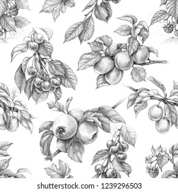 Hand drawn branches of fruits and berries isolated on white background. Monochrome seamless pattern made with sketch of apple, plum, cherry, raspberry and apricot. Pencil drawing.