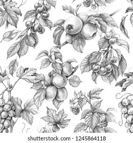 Hand drawn branches of fruits and berries isolated on white background. Monochrome seamless pattern made with sketch of apple, grape, cherry, raspberry and apricot. Pencil drawing.